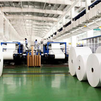 瓜尔胶应用领域:造纸